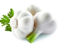 【蔬菜配送】時令蔬菜新鮮大蒜縣城內免費配送7元/斤,1號店產品可拼單滿50元起送!