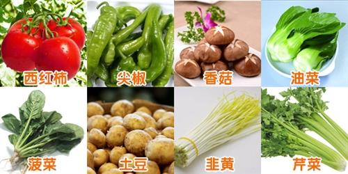 59元蔬菜套餐(共9斤)
