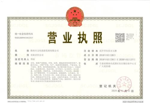 陇南市文化旅游发展有限公司