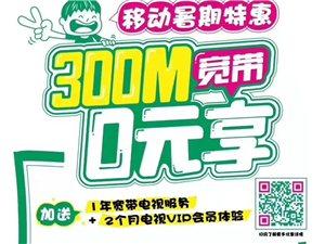 中国移动网络电视