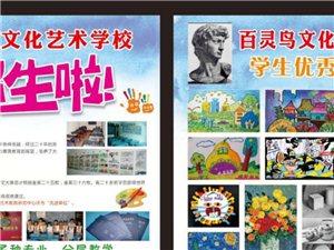 百灵鸟文化艺术学校常年招生
