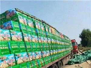 新疆红枣、核桃、葡萄干、坚果批发零售