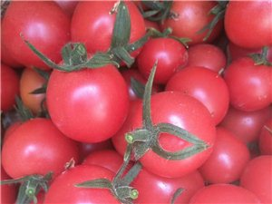 圣女果(小西红柿)