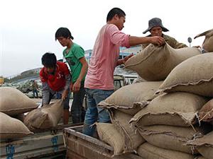 郑州人力搬运卸货装车电话有叉车吊车24小时服务