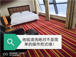 平邑專業地毯,沙發清洗!