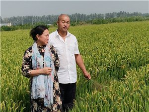 现磨鲜米更健康