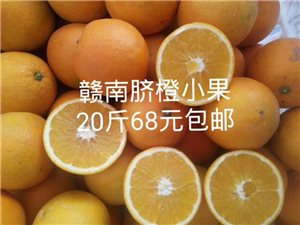 赣南脐橙中果,小果便宜清货
