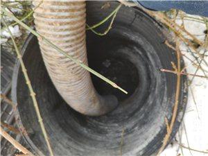 齊河專業化糞池清理/39齊河抽糞清理廁所