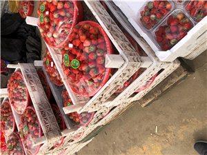 新鮮水果,同城速送