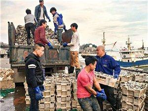 郑州航空港人工搬运卸货装车工人电话专业卸半挂高栏