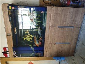 1.2米鱼缸低价出售