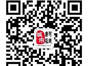 威尼斯人游戏网站11.19招聘信息