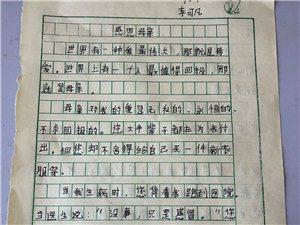 """2019""""外国语杯""""杞县学生作文大赛-017李可凡"""