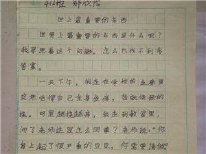 """2019""""外国语杯""""杞县学生作文大赛-002郝欣怡"""