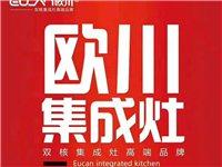 青州市欧川集成灶