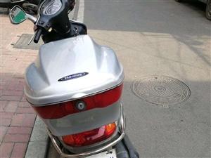 出售原�S豪爵�木踏板,�o事故,按�r保�B,9成新,2300元不�v�r。