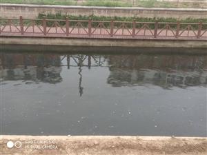工�r河成了黑水河
