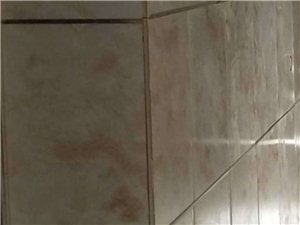 承接室内装修设计