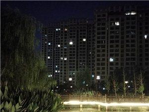 夜幕下的育才河景色如画,可你为什么那么臭?