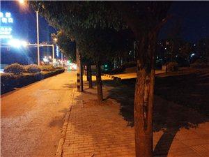 本人于2019年7月20日晚在解放南路与迎宾大道交叉口小花园广场因醉酒丢失蓝色胸包一个,里面有一串带