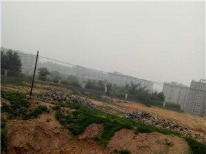 东山114号因工程停工造成环境污染