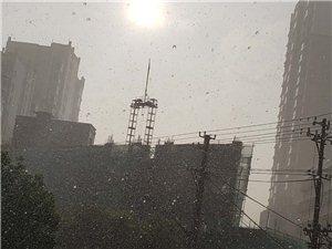 爆雨大太阳