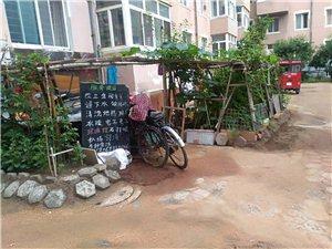 小区内路面遭破坏,占路修成自家小花园