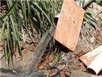 武当镇白沙村石粉厂污水直接排到河里