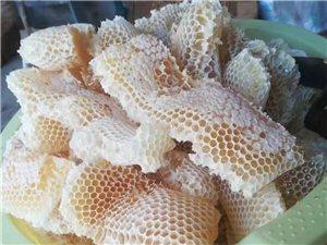优质纯野生蜂蜜销售