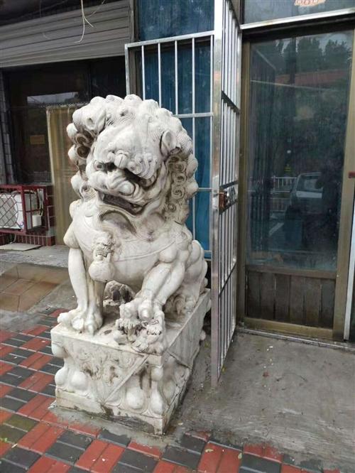 出售石狮子一对,1.6米左右,当面议价,电话13933721001