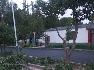下西号镇沙地村的工程