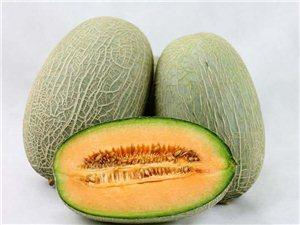 出售哈密瓜
