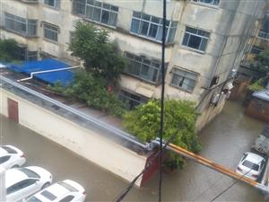 滨州邮电小区排水?#20302;?#19981;?#33579;?#20648;藏室被淹