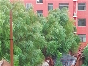 滨州黄河四路渤海十一路大洋毛纺厂小区房屋年久失修!大面积坍塌!