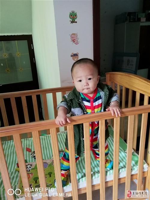 实木婴儿床,纯天然木材,质量非常好。原价2000多买来的,现低价转手。可升降两档,买就送蚊帐,床垫和...