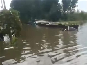 小清河沿岸(��西路)居民倒灌�乐兀。。�