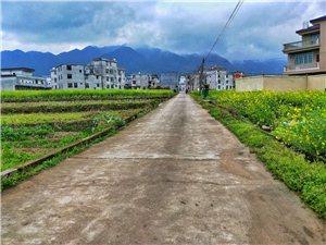 龙南县杨村镇,今天给大家分享一下杨村镇的某个小村庄?