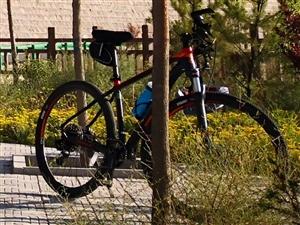 9.99新美利达20款挑战者600,骑行不超过200km,因膝盖原因,现出售。原价4300。自提。