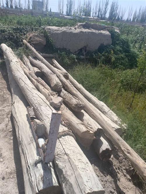 大量收购木头,干货湿货都可以,有货的联系13830180173