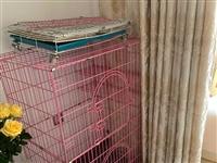 可折叠大三层的猫笼,猫大了要换笼子,地址县城附近