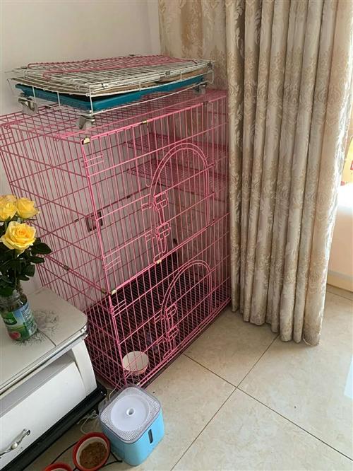 可折疊大三層的貓籠,貓大了要換籠子,地址縣城附近