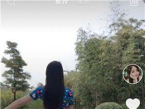 找陈店乡的陈东梅陈海滨看到信息联系我