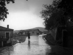 《秋雨》文/�⒏�囤