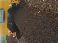 微生物菌发酵鸡粪有机肥  高于525国标 瓜果苗木  必不可少的肥料