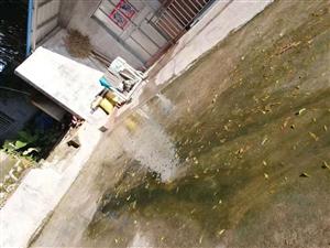 街道当做排水沟乱排污水。
