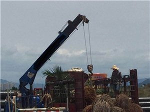 5吨自带吊车