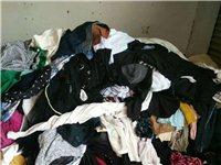 公益环保,旧衣回收,免费上门。临泉范围内大量回收:旧衣服,旧鞋子,旧包包,旧棉被,丝棉被,丝棉枕头,...