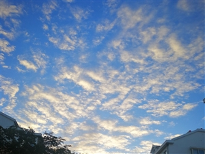旭日清晨,蓝天白云,朗朗好乾坤!风清气正,楼矗桥横,堂堂美人间!