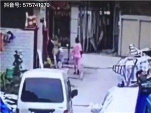 朋友家的狗狗被偷狗贼偷了,有视频