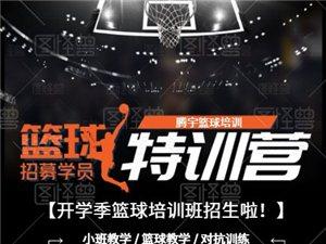 騰宇籃球培訓